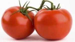 Tomatoes-300x169