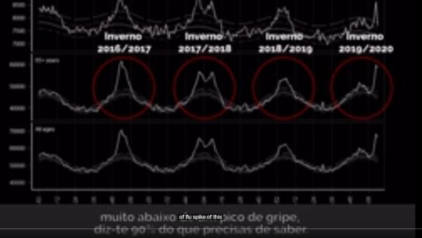 ENTREVISTA QI - COVID 19 - grafico momo